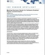 IDC Report - software digital transformation
